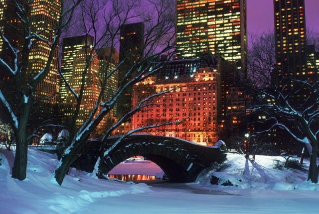 Central Park 1 Bedroom photo 52361