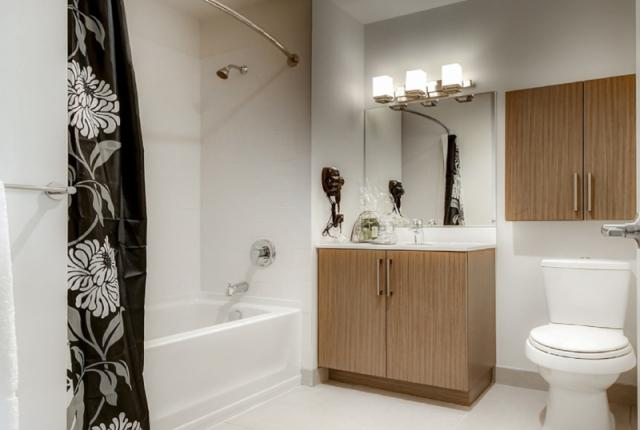 Luxury Apartments at Newport photo 53287
